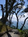 Mangawhai cliff walk: coast view Bream Bay and Sail Rock Royalty Free Stock Photo