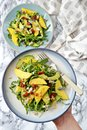 Mango and avocado salad Royalty Free Stock Photo