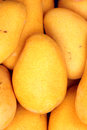 Mango the close up of ripe Stock Images