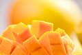 Mango cubes slices close up macro with mangos in background Stock Photography