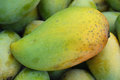 Mango fruit , thailand Royalty Free Stock Photos
