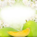 Mango and slice photo of with blossom background Royalty Free Stock Images