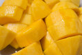 Mango slices  chunks Royalty Free Stock Photography