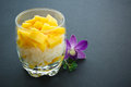 Mango verrine sticky rice on black background Royalty Free Stock Image