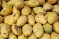 Mangoes pile of in market Royalty Free Stock Image