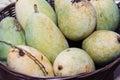 Mangos on the basket big mango fruit Stock Image