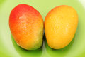 Mangos on a green background Royalty Free Stock Photos