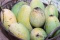 Mangos oon the basket big mango fruit on Royalty Free Stock Image