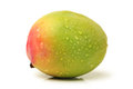 Mangos on a white background Royalty Free Stock Photography
