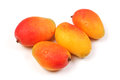 Mangos on a white background Royalty Free Stock Images