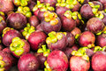 Mangosteen fruits Royalty Free Stock Photography