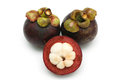 Mangosteen a peeled put together others on white background Royalty Free Stock Photography
