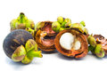 Mangosteen and segment with clipping path on white Stock Photos