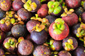 Mangosteens in the market tropical fruits Stock Photos