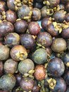 Mangosteens tropical fruit mangosteen is good for body metabolism Royalty Free Stock Photography