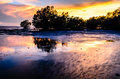 Mangrove beautiful in sunset landscape view Royalty Free Stock Photo