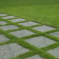 Manicured grass Royalty Free Stock Photography