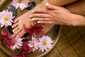 Manicured hands and pedicured feet Royalty Free Stock Photography