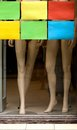 Mannequin legs in a showcase. Royalty Free Stock Photo