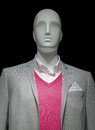 Mannequin in a light gray jacket red sweater and white shirt on black background clipping path included Royalty Free Stock Image