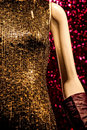 Mannequin In A Sequins Dress
