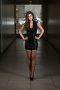 Mannequin wearing black dress Royalty-vrije Stock Foto