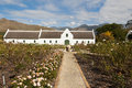 Manor house on wine farm with a rose garden white and pathway mountains in the background Royalty Free Stock Image
