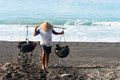 Manual male worker collects water sea salt production volcanic black sand amuk bay bali indonesia salt farmers follow unique Stock Images