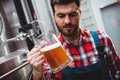 Manufacturer examining beer in glass by storage tank Royalty Free Stock Photo