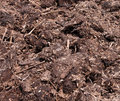Manure Royalty Free Stock Photo