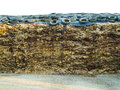 Manure heap of covered with old tires Royalty Free Stock Images