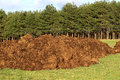 Manure spreading a bunch of farm for organic agriculture Royalty Free Stock Images