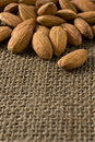 Many almonds Royalty Free Stock Image