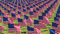 Many American flags on display for Memorial Day or July 4th. Royalty Free Stock Photo