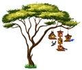Many birds on birdhouse hanging from tree