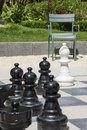 Many black chessmen and white bishop on the street chessboard with chair green grass as background Stock Photo