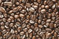 Many coffee beans background Royalty Free Stock Photos