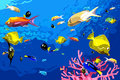 Many colorful fish swim under water Royalty Free Stock Photo
