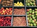 Many different fruits, coconut, nectarines, plums, mango Royalty Free Stock Photo