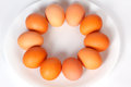 Many eggs on a plate white Stock Photo