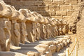 Many Egyptian sculptures in row Royalty Free Stock Photo