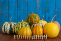 Many fany pumpkins behind miniature or toy wooden Royalty Free Stock Photo
