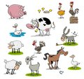 stock image of  Many farm animals