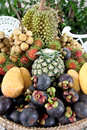 Many of fruits in the basket is domestic thailand Stock Images