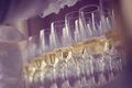 Many glasses of wine Royalty Free Stock Photo