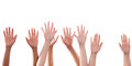 Many hands raise high up on white background Stock Photography