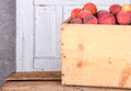 Many peaches in wooden crate Royalty Free Stock Images