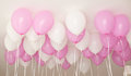 Many pink balloons for girl`s Birthday. Royalty Free Stock Photo
