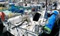 Many pogo sailboat Stock Photography
