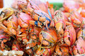 Many red crabs for sale on market Royalty Free Stock Images